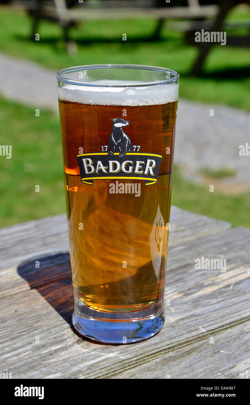 Pint of Badger beer - Stock Image