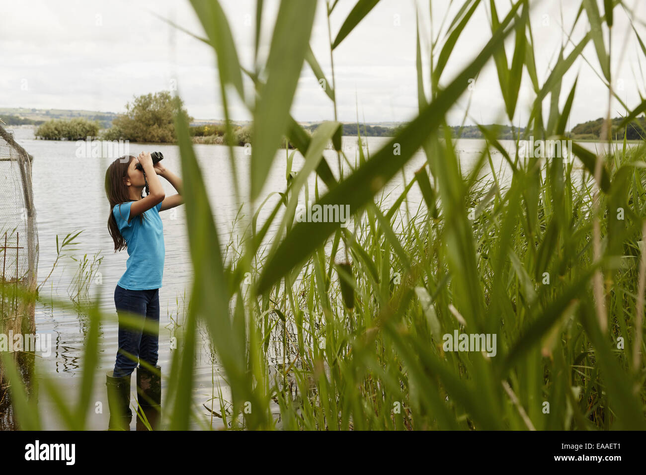A young girl, a birdwatcher with binoculars. - Stock Image