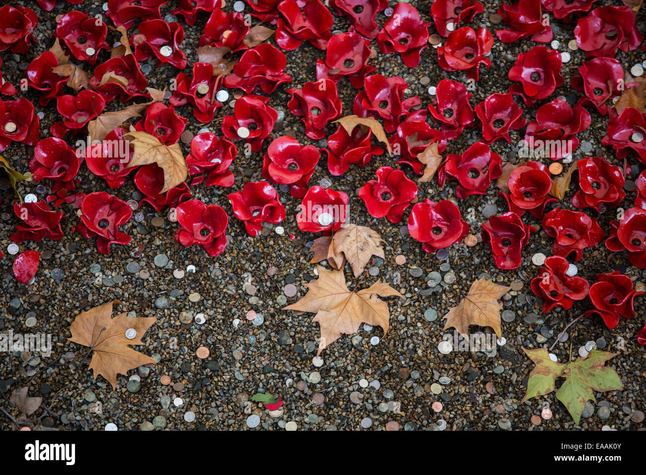 Tower of London poppy art installation called Blood Swept Lands and Seas of Red to remember those died during First - Stock Image