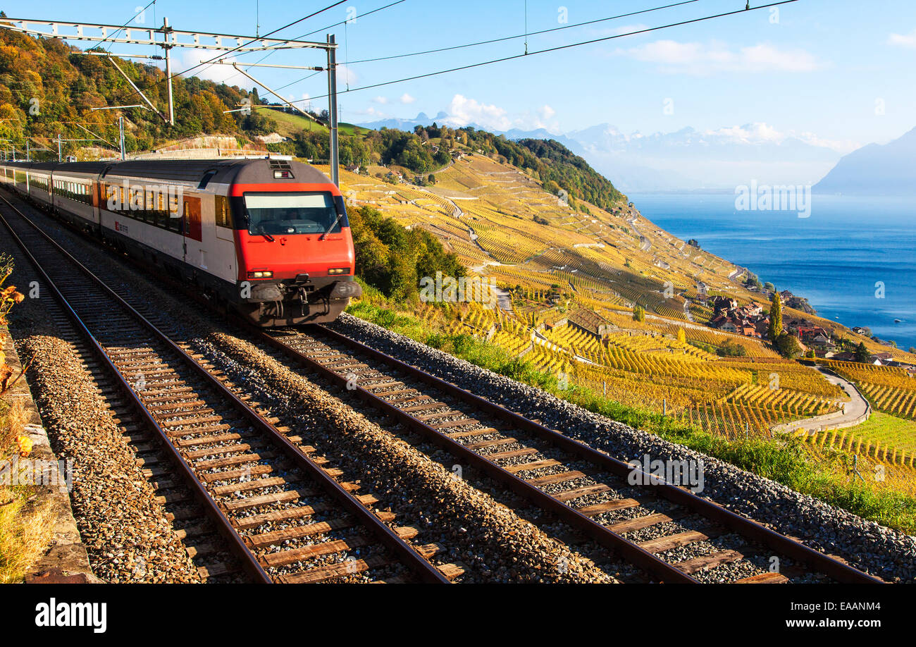 A Train Passing Through the World Heritage Area of Lavaux, Switzerland - Stock Image