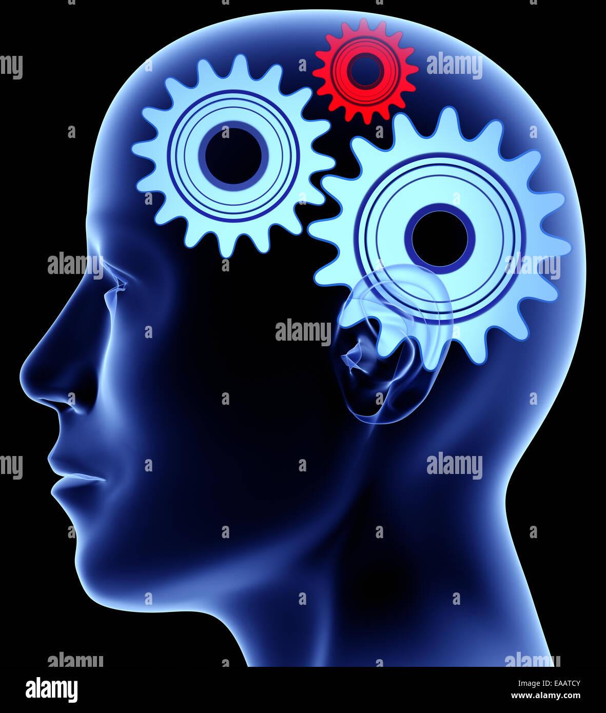 Head with gears inside Stock Photo