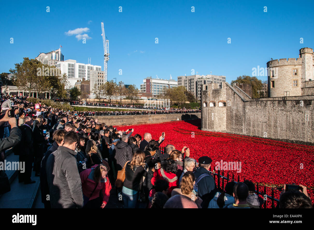 Blood Swept Lands and Seas of Red is a 2014 work of installation art placed in the moat of the Tower of London for Stock Photo