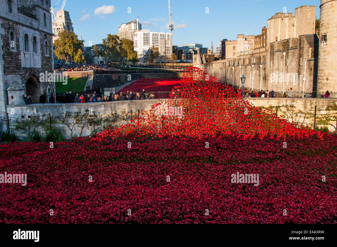 Blood Swept Lands and Seas of Red is a 2014 work of installation art placed in the moat of the Tower of London for - Stock Image