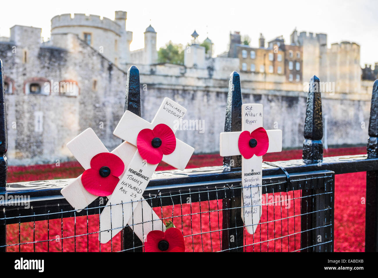 Blood Swept Lands & Seas of Red at the Tower of London Stock Photo