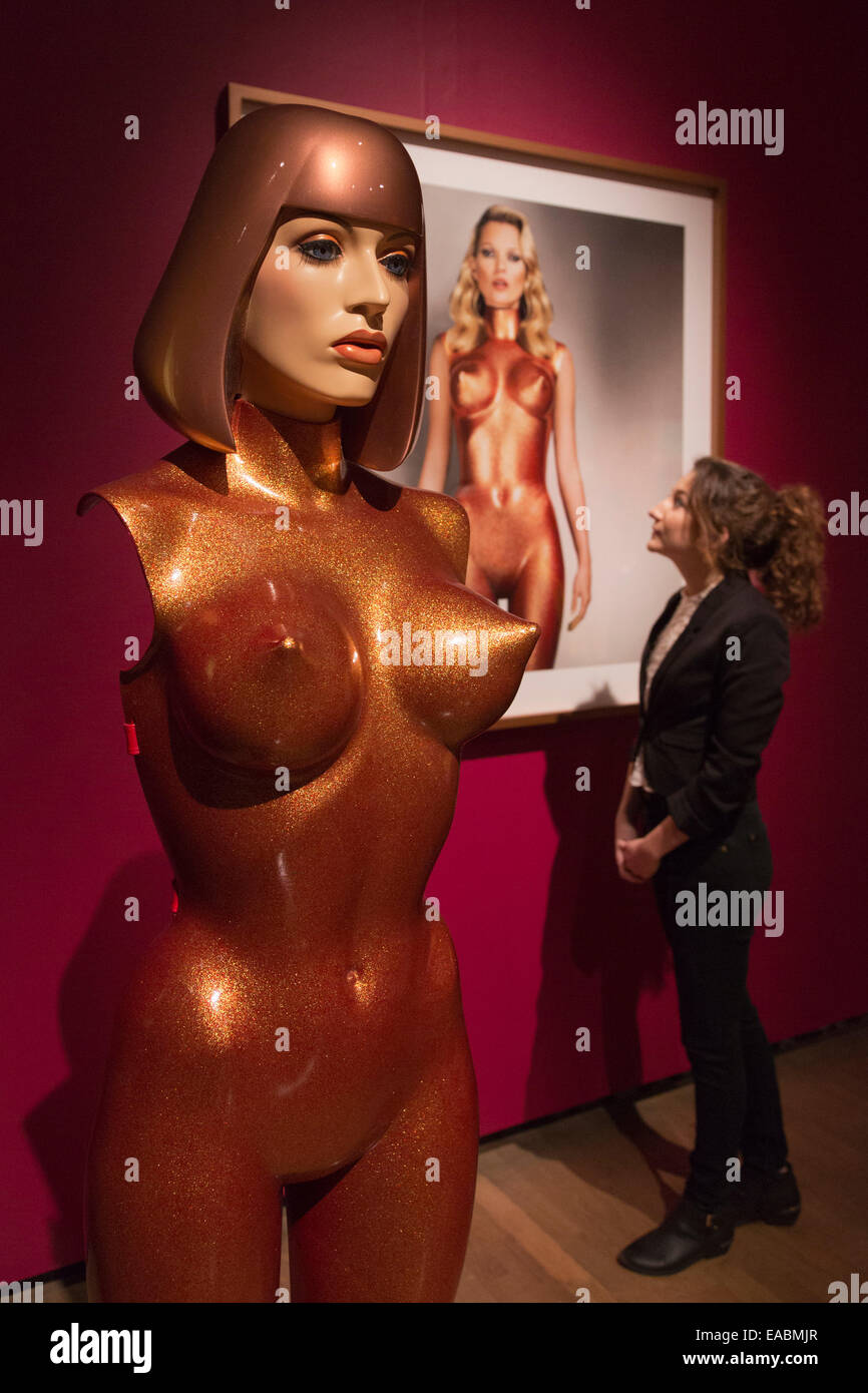London, UK. 11th November, 2014. A gallery assistant looks at the artwork Body Armour, 2013. The Royal Academy of - Stock Image
