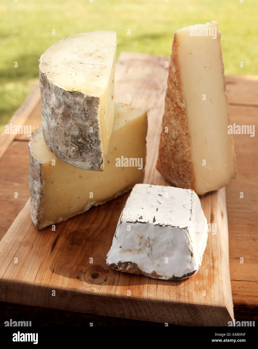 cut cheeses on cutting board - Stock Image