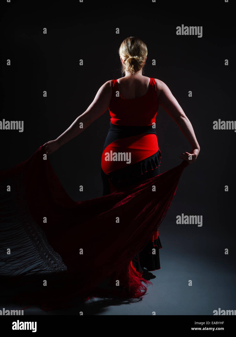 Flamenco - Stock Image