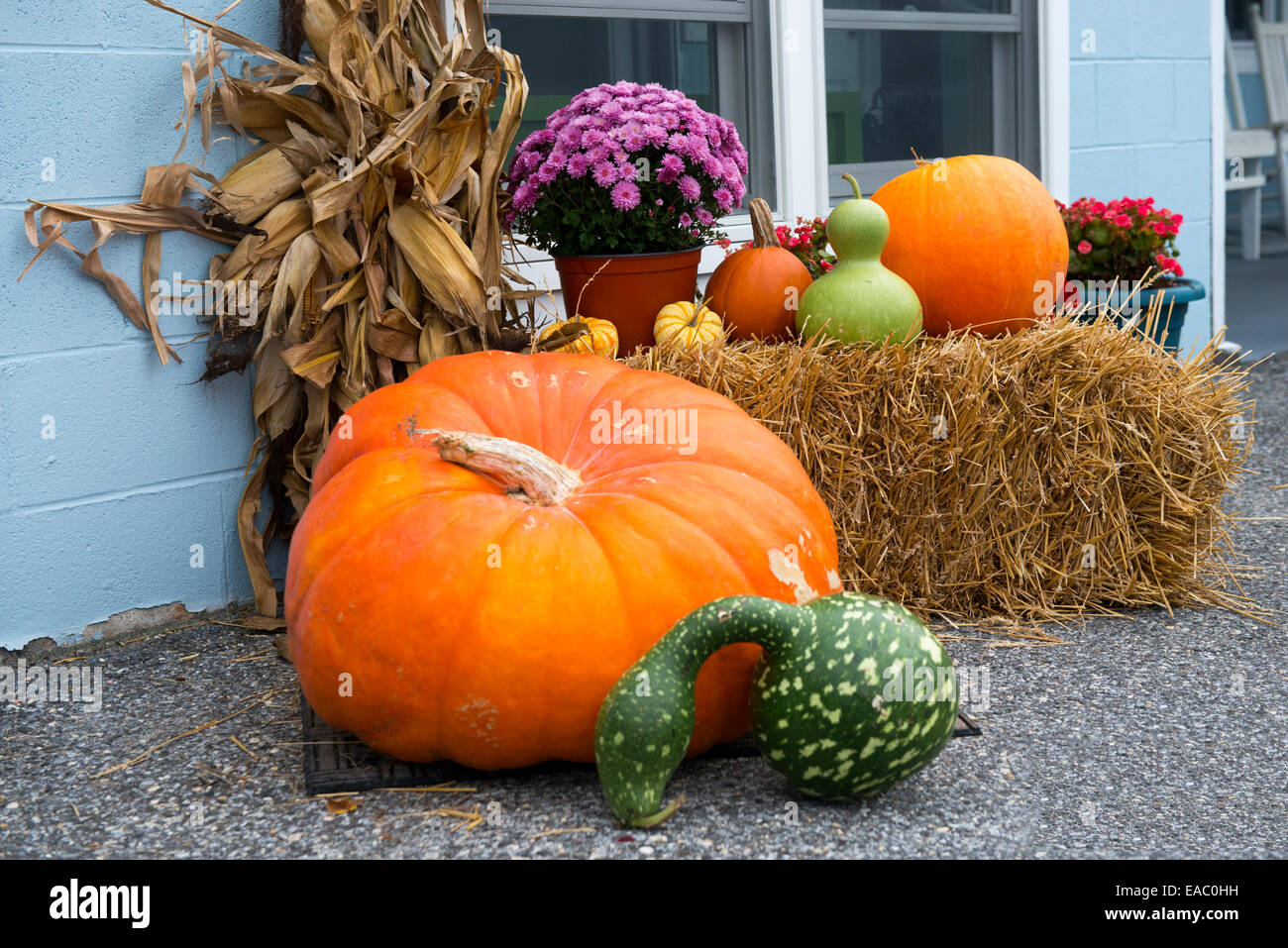 Cape May Halloween.A Halloween Display In Cape May New Jersey Usa Stock Photo