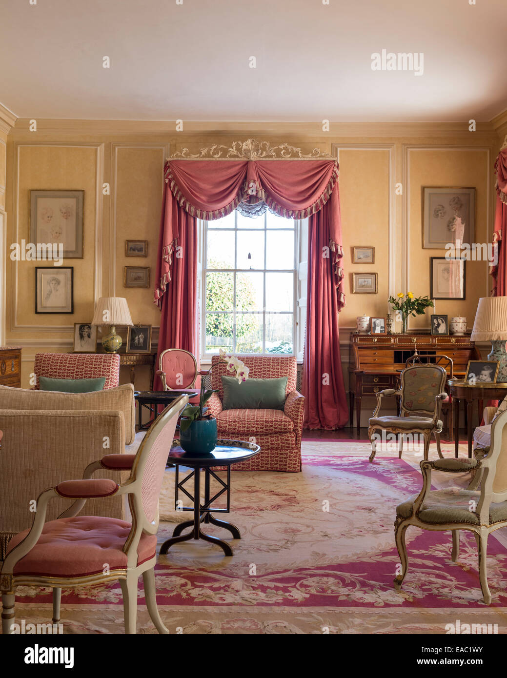 Dusty pink coloured curtains with swags and tails in elegant drawing room with Louis XVI style armchairs and large - Stock Image