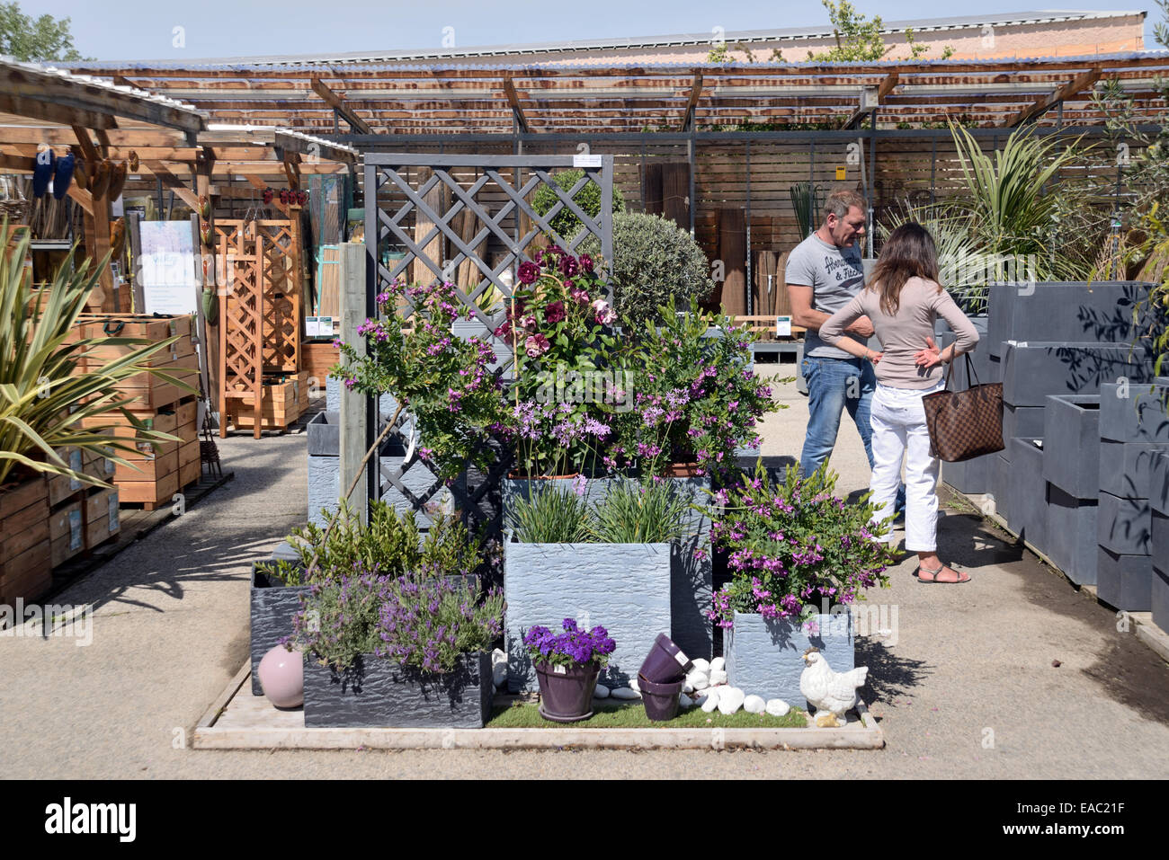 Couple Shopping in Garden Center with Display of Stylish Gray or Grey Planters or Plant Pots and Lavender Plants - Stock Image