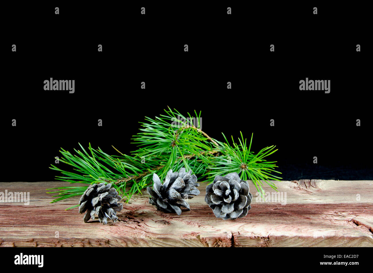 Three pine tree cones and a twig at an old weathered wooden table at black background - Stock Image