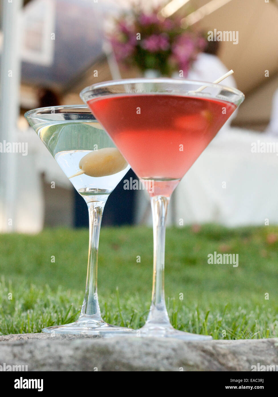 Cosmopolitan and Martini on lawn during garden cocktail reception - Stock Image