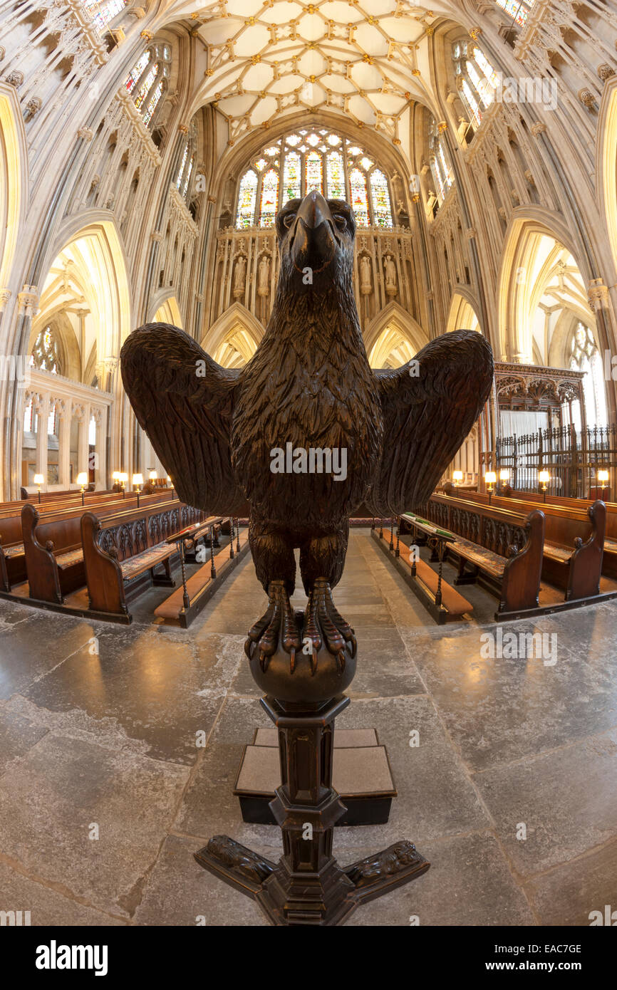 The carved wooden eagle lectern of Wells Cathedral in Somerset - Stock Image