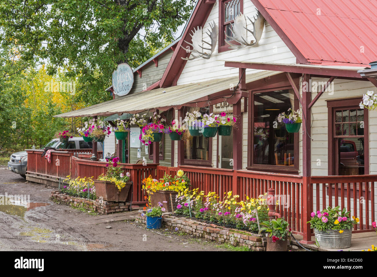 New Golden Saloon in the small town of McCarthy in Southcentral Alaska; McCarthy, Alaska, United States of America - Stock Image