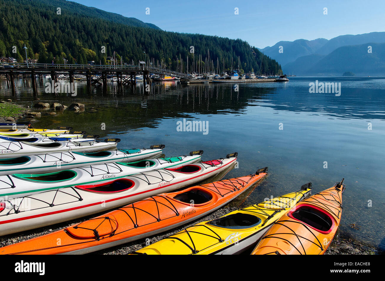 Colourful kayaks are lined up on the beach at Deep Cove