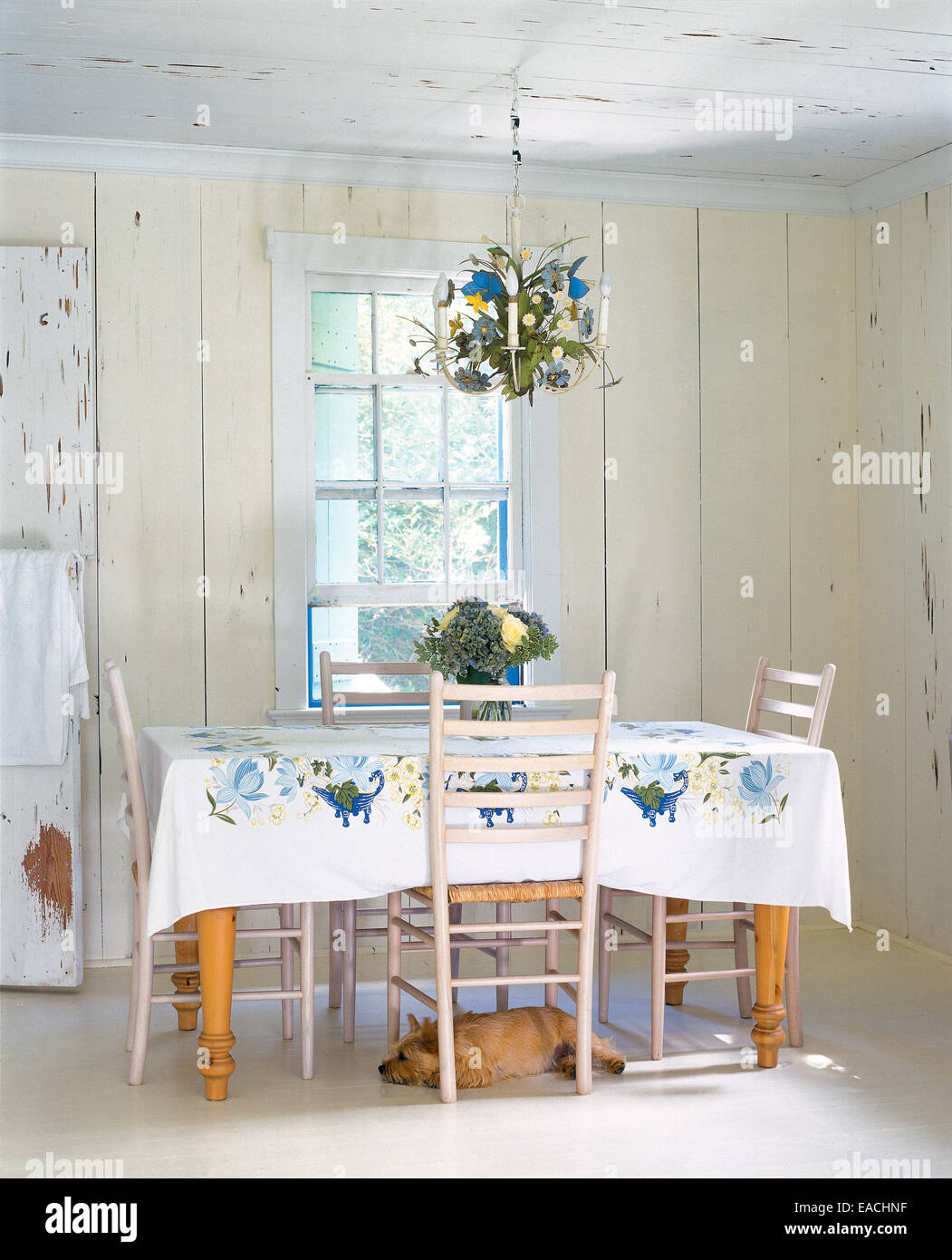 country dining table with dog under it - Stock Image