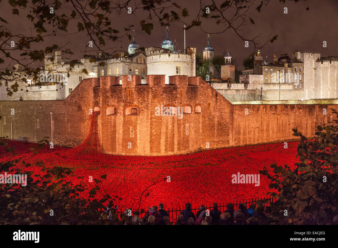 London, England, UK. 11 November 2014. The Tower of London in the night of Armistice Day – the final day to see Stock Photo