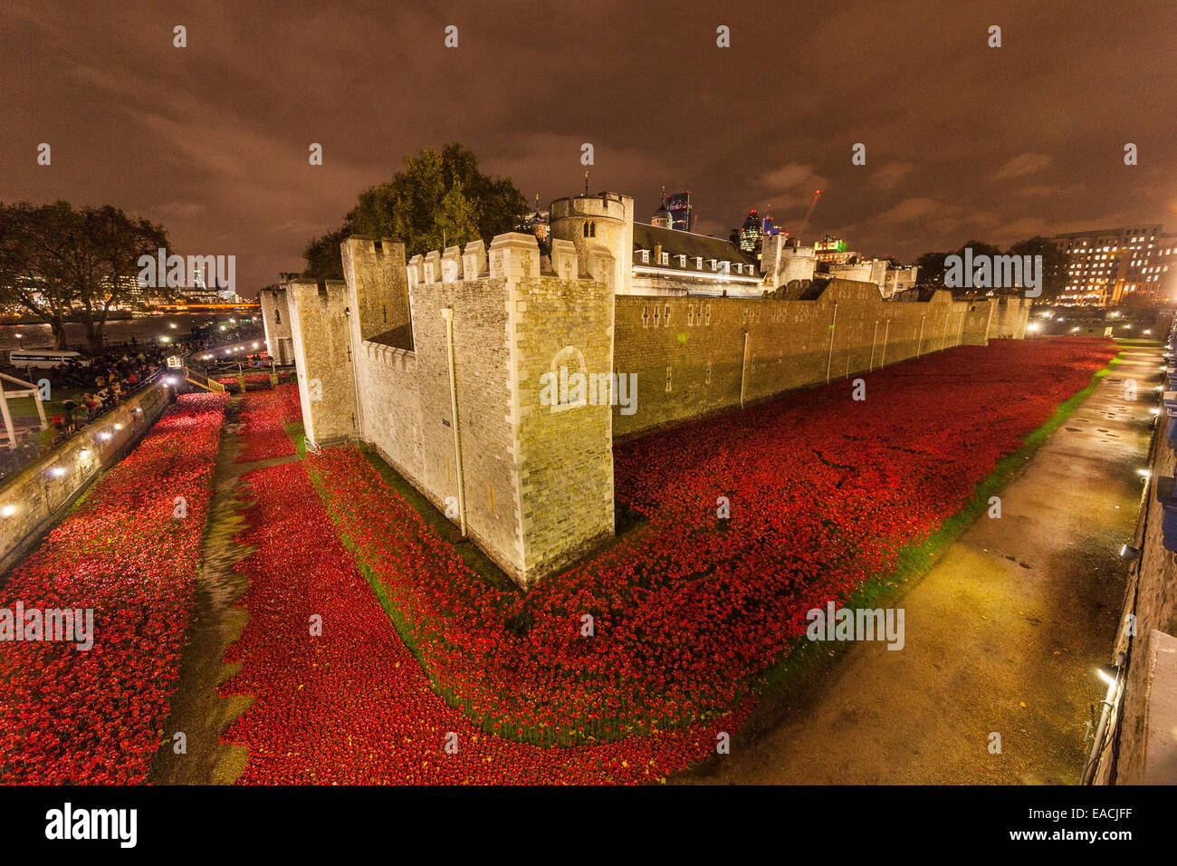 London, England, UK. 11 November 2014. The Tower of London in the night of Armistice Day – the final day to see - Stock Image