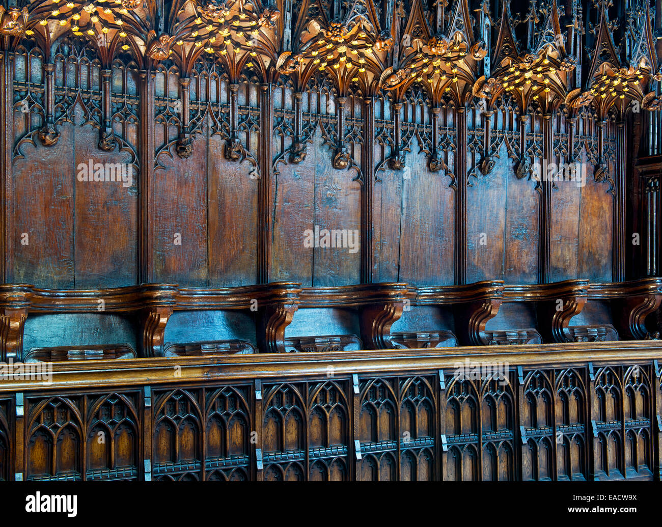 Choir stalls in St Mary's Church, Nantwich, Cheshire, England UK - Stock Image