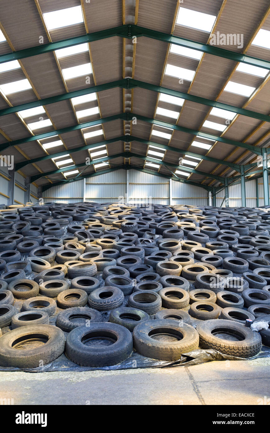 silage clamp on farm - Stock Image