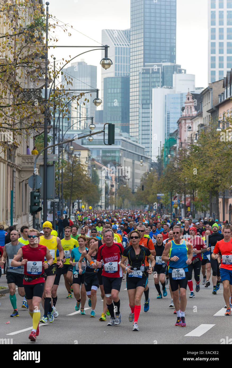 33rd BMW Frankfurt Marathon, field of runners with skyscrapers at the back, Westend, Frankfurt am Main, Hesse, Germany - Stock Image