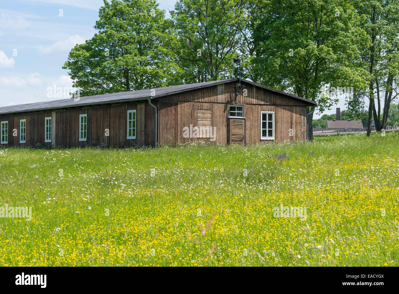 Wooden barracks, former hospital ward, Buchenwald concentration camp, Weimar, Thuringia, Germany - Stock Image