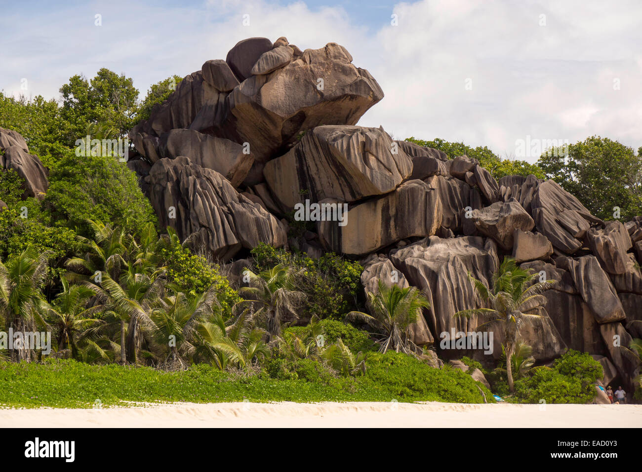 Rock formations typical for the Seychelles, at the beach, Grand Anse, La Digue, Seychelles - Stock Image