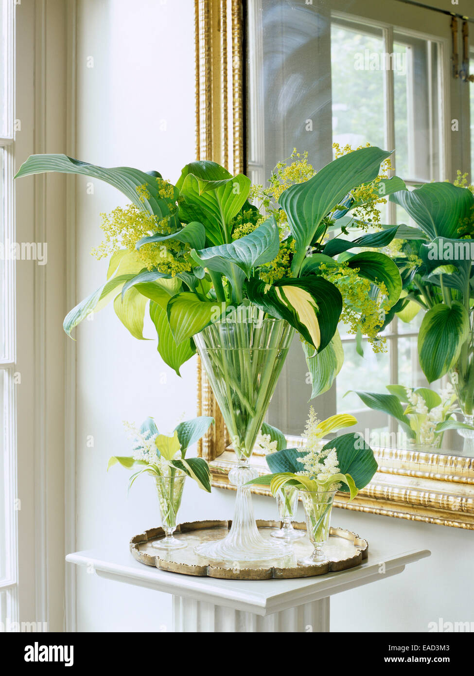 vase with boquet made from Hosta leaves - Stock Image