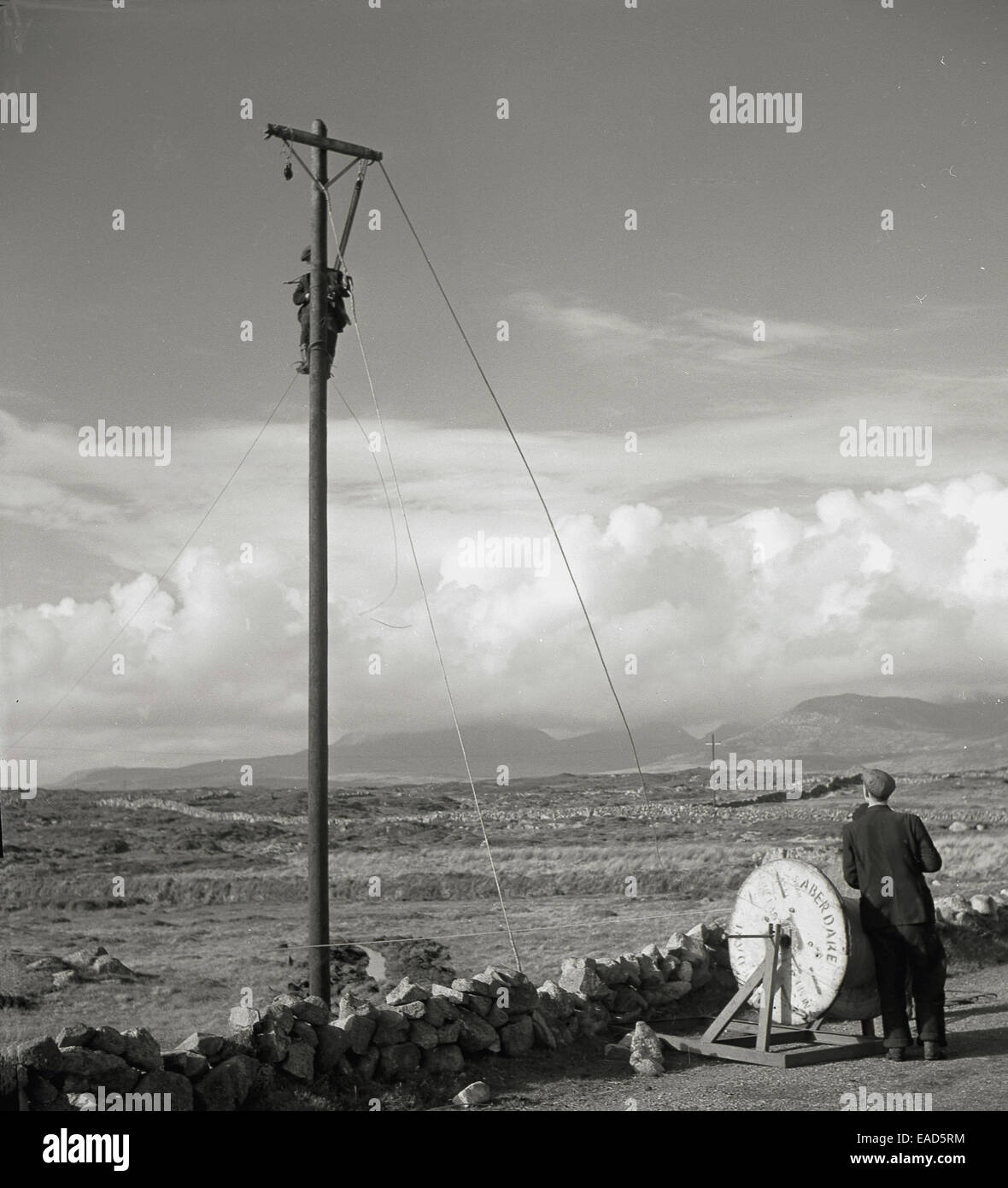 1950s historical picture of two male workers fixing telephone cables, one up the wooden pole, on a country lane - Stock Image
