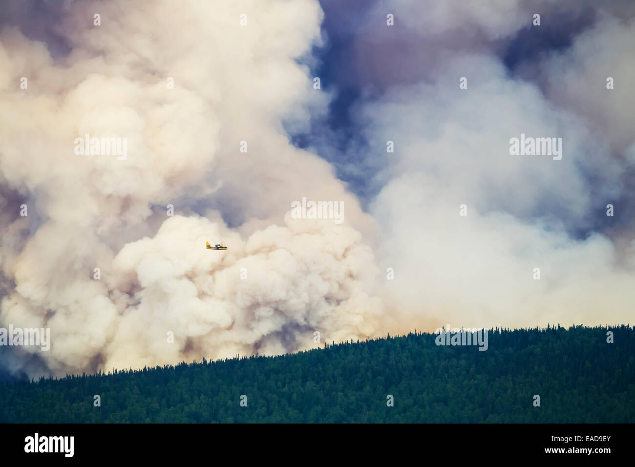 Aircraft attempt to suppress the Hastings wildland forest fire near Murphy Dome, North of Fairbanks; Alaska, USA Stock Photo