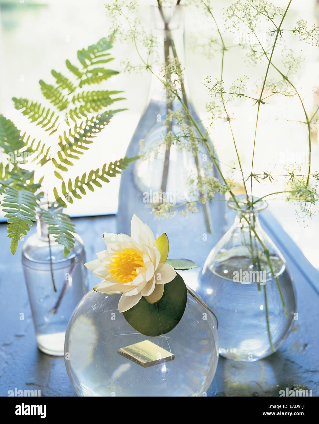 floral arrangement - Stock Image