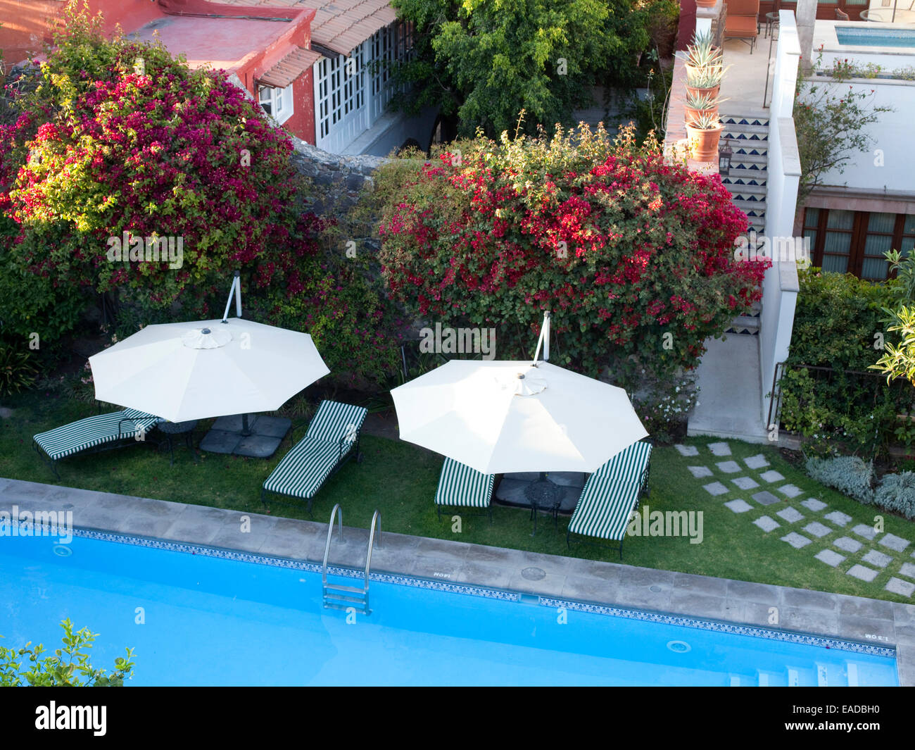 Hotel swimming pool and garden with umbrellas and chaise lounge chairs - Stock Image