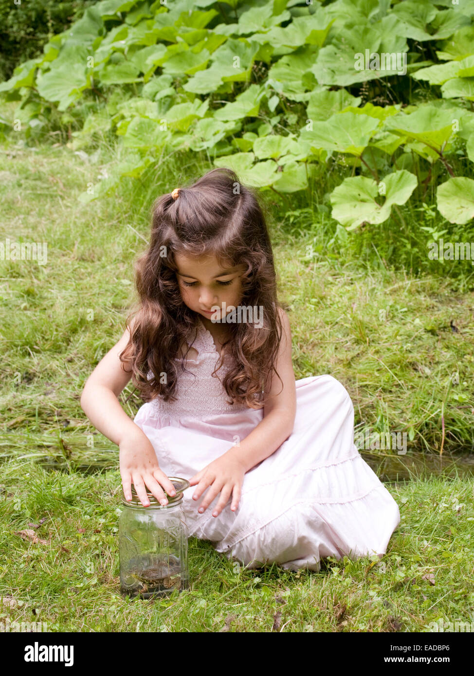 young girl with frog in jar in country - Stock Image
