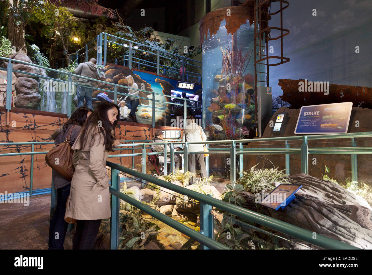 People looking at the exhibits, The National Sealife Centre, Birmingham, UK - Stock Image