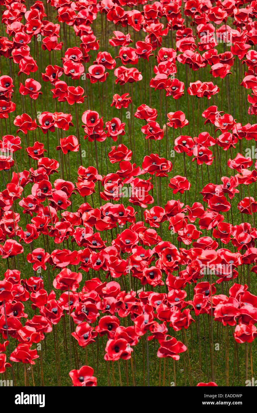 Blood Swept Lands and Seas of Red display at the Tower of London Stock Photo