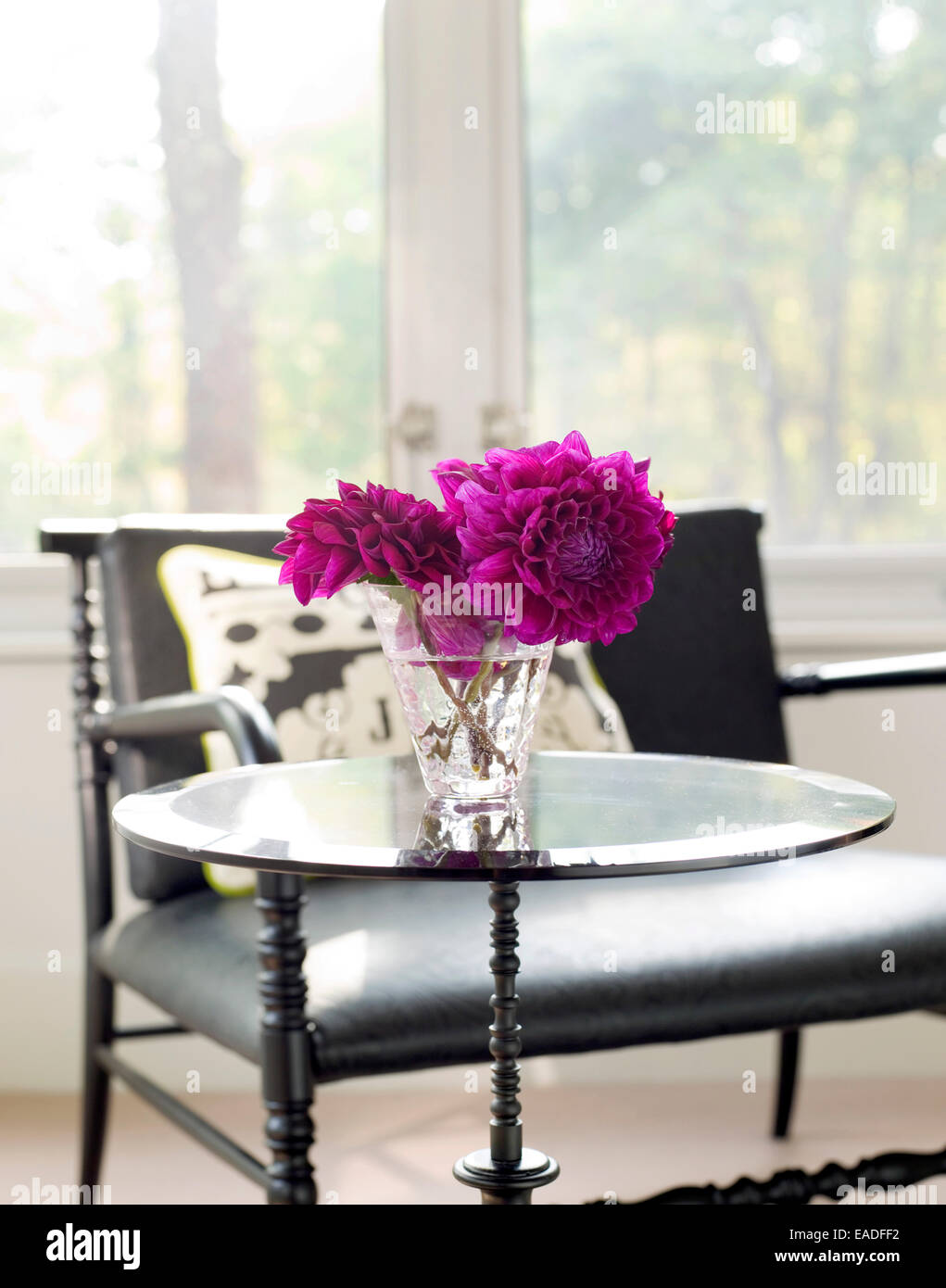 Dalias On a table at home - Stock Image