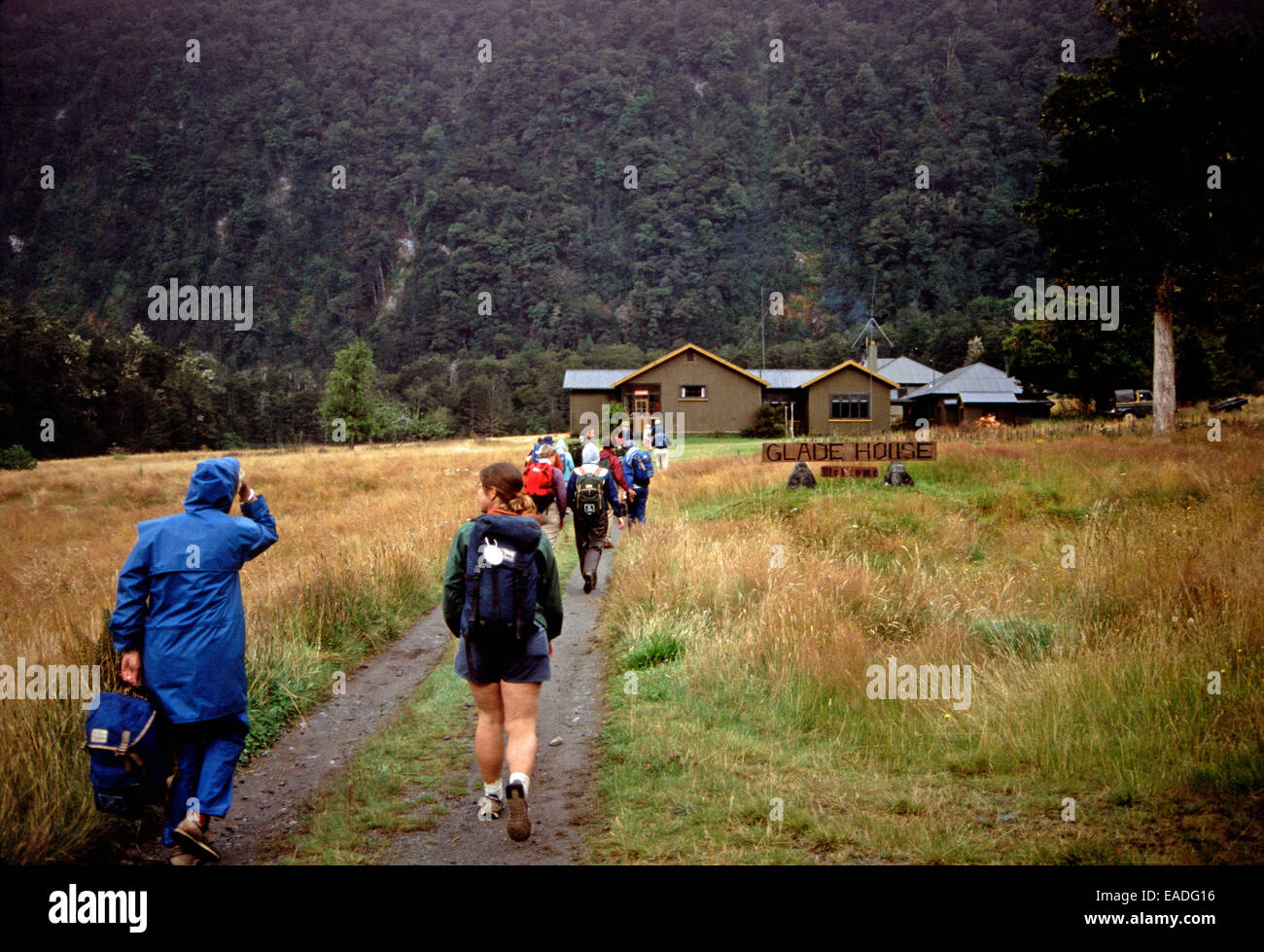 Hikers starting on the Milford Trek,Glade House,New Zealand - Stock Image