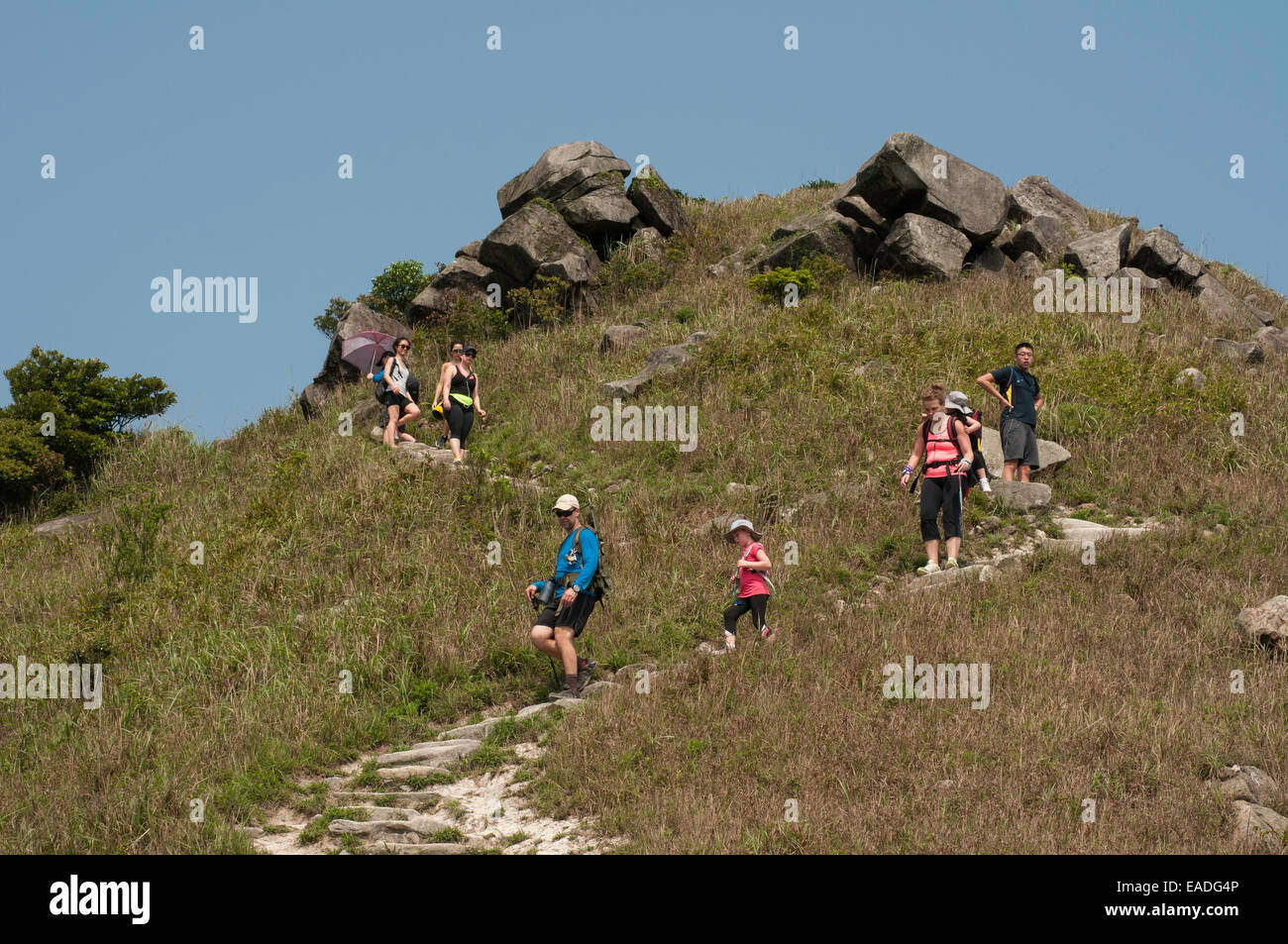 Hikers walking down the steep trails of Sunset Peak, Tai Tung Shan, located on Lantau Island Hong Kong China - Stock Image