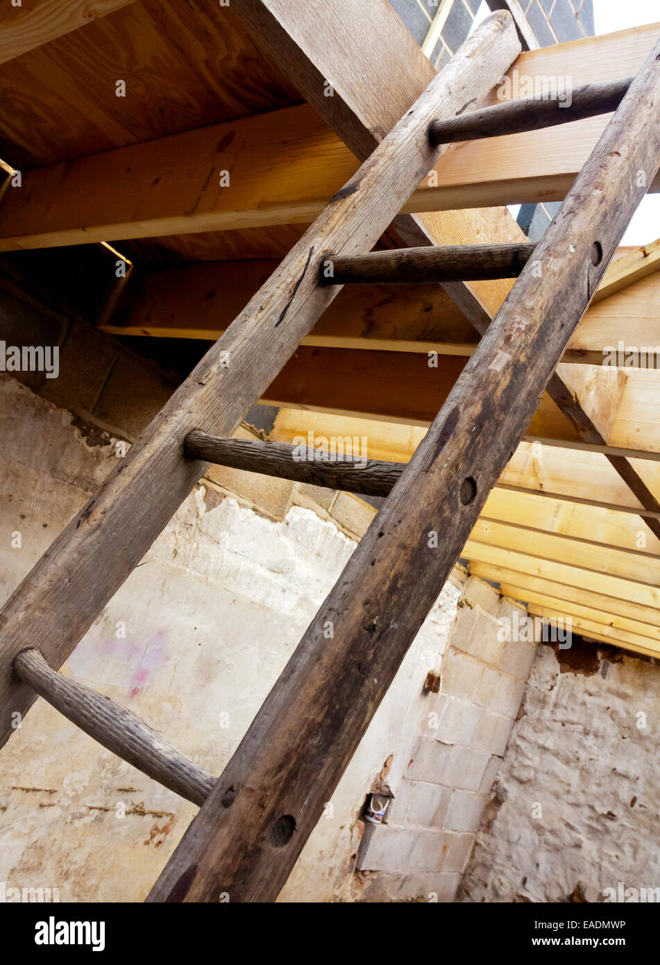 Detail of wooden ladder leading to wooden roof beams on a building site - Stock Image