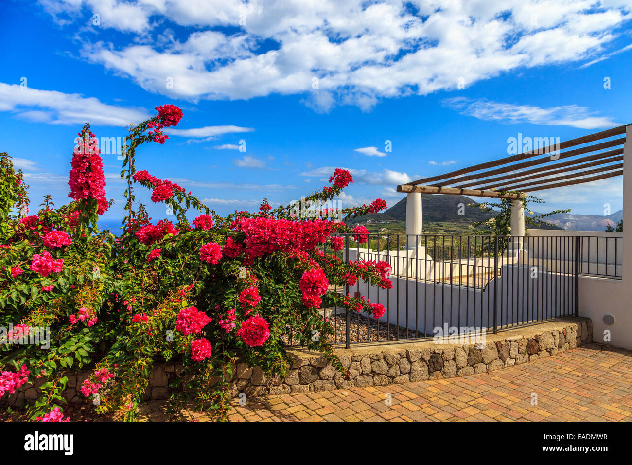 Aeolian house with a beautiful plant of Bougainvillea - Stock Image