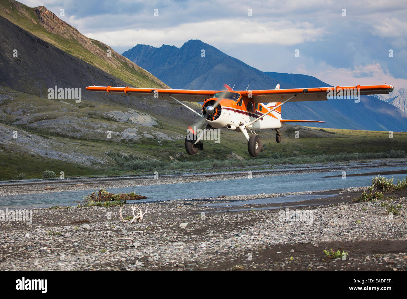 Bush Plane,Canning River,arctic refuge,Arriving - Stock Image