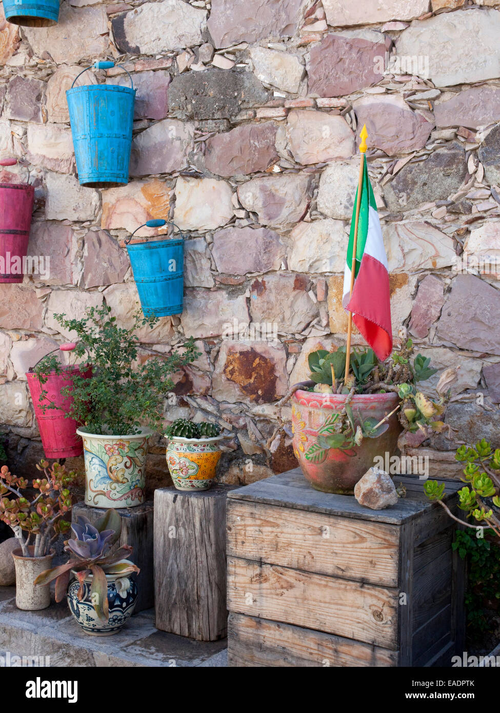 Garden of Potted Succulents and Mexican Flag - Stock Image