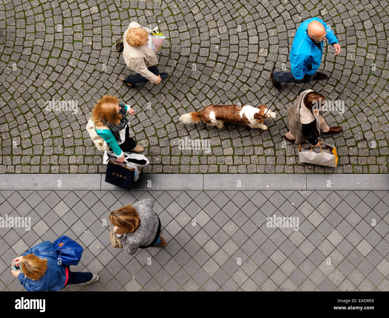 Aerial View Of People Walking Their Dog On A Leash