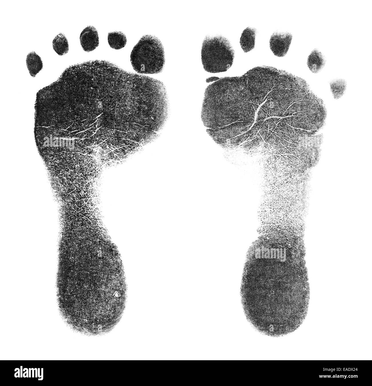 Black Baby Foot Prints Isolated on white Background. - Stock Image