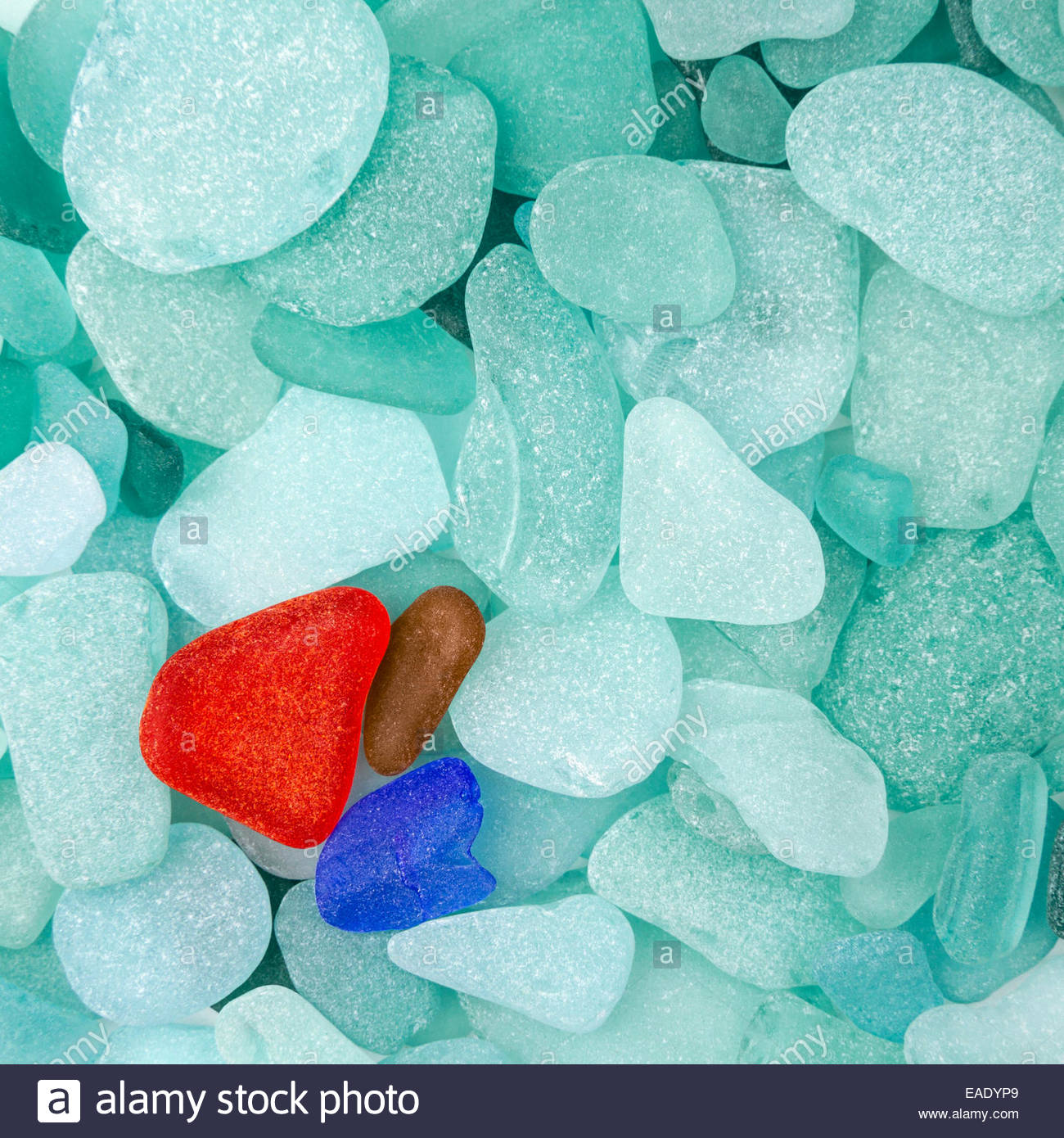 Three different sea glasses isolated on green sea glass background - Stock Image