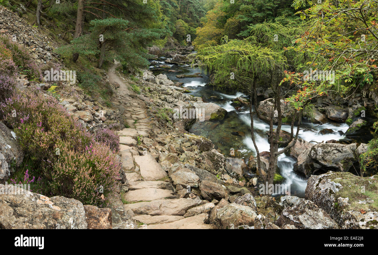 The a stone path lines the river Glaslyn as it flows between the trees and rocks of the Aberglaslyn Pass in Snowdonia, Stock Photo