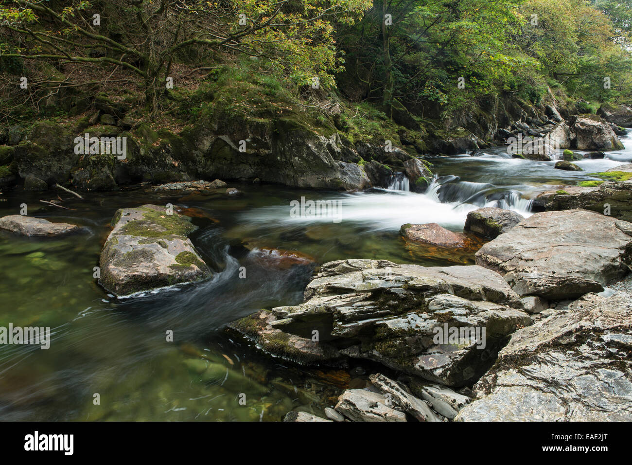 The river Glaslyn flows between the trees and rocks of the Aberglaslyn Pass in Snowdonia, Gwynedd, North Wales Stock Photo