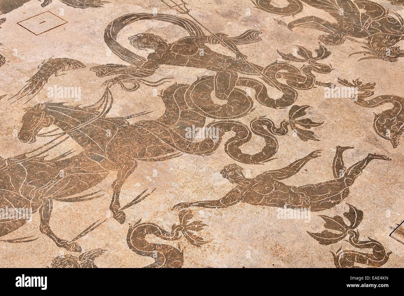 Roman mosaic in the Neptune Therme, Terme di Nettuno, Ostia Antica, Rome, Lazio, Italy - Stock Image