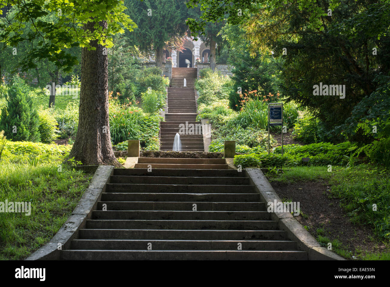 Stairs in the park of Villa Haar, 1885, now an event and conference venue, Ilm Park, Weimar, Thuringia, Germany - Stock Image
