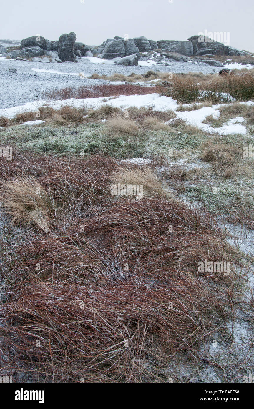 Unpredictable weather on Kinder Scout. Rocks and moorland grasses with light dusting of snow. - Stock Image